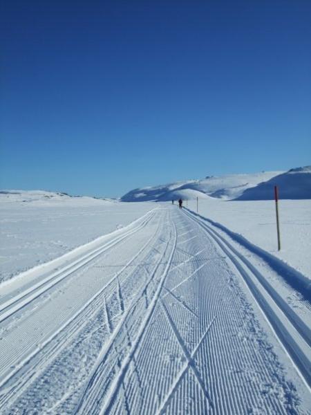 skisporbilde2-eli-haugen