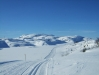 skisporbilde-eli-haugen