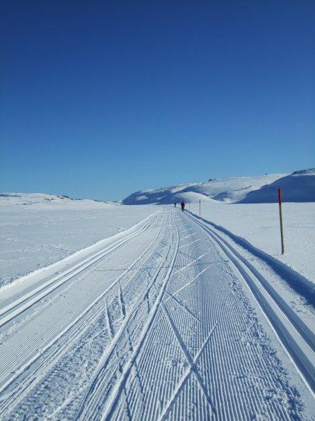 Skisporbilde2 Eli Haugen